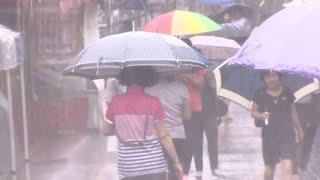 부산 113년 관측사상 최강 폭우…물폭탄 원인은? / 연합뉴스TV (YonhapnewsTV)