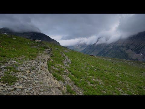 Pure Wilderness: Glacier National Park