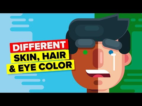 Why Do We Have Different Skin, Hair and Eye Color?