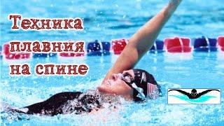 Плавание на спине. Как научиться плавать на спине без ошибок