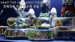 수반 어항 실내 분수 식물인테리어 5종