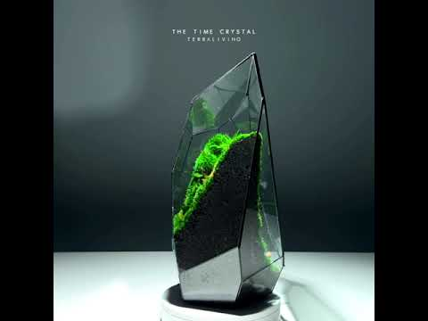 An overview of The Time Crystal, a Preserved Moss Geometric Terrarium by TerraLiving