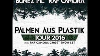 Karmo Kaputto  Palmen aus Plastik Touransage