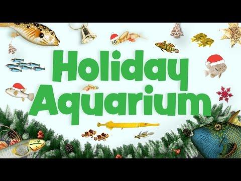 Holiday Aquarium in 4K