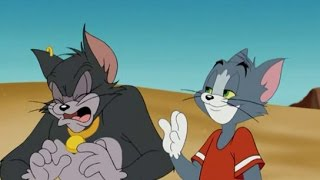 Tom and jerry cartoon classic collection full episodes hd #35