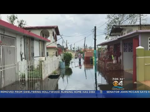 State Rep. Robert Ascencio: Puerto Rico Needs 'Complete Assistance With Its Infrastructure'