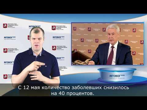 ОНЛАЙН-ВСТРЕЧА Владимира Путина с Сереем Собяниным