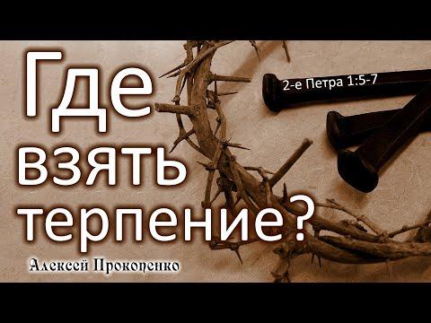 Где взять терпение? | Ступени духовного роста.  2-е Петра 1:5-7 | Алексей Прокопенко