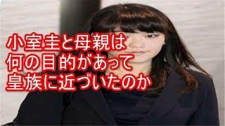 【皇室】小室圭と母親は何の目的があって皇族に近づいたのか 小室圭 動画 7