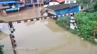 Pattambi town flood water | Kerala flood 2018 | palakkad flood