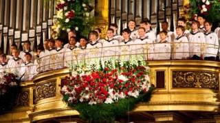 Ежегодный Новогодний концерт Венского филармонического оркестра.