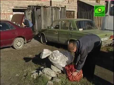 В Большом Седельниково каждую осень жертвуют урожай