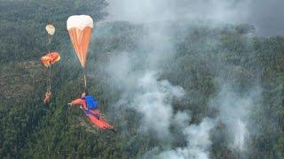 Чем богаты: леса Прикамья. Небесные огнеборцы