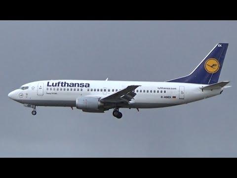 Information + Landing Lufthansa B733 || Hamburg Airport