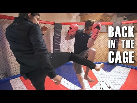 GETTING IN THE CAGE! - BEST KICK & PUNCH BEGINNER COMBINATIONS - Learn To Kick