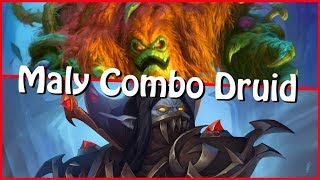 Maly Combo Druid