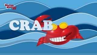узнать морских животных в английском, для детей