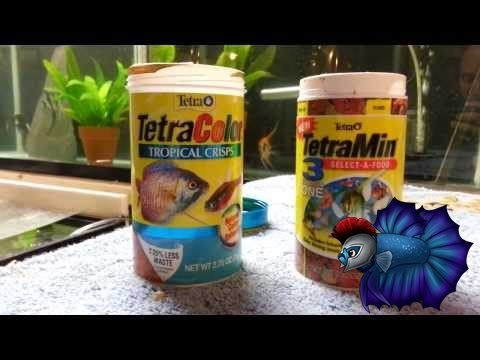 Tetra Fish Food 3 In 1 Food Plus Tetra Color Crisp