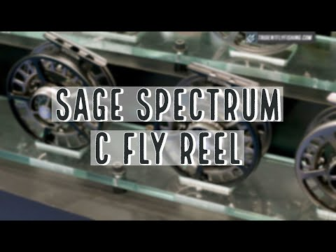 Sage Spectrum C Fly Reel | Insider Review