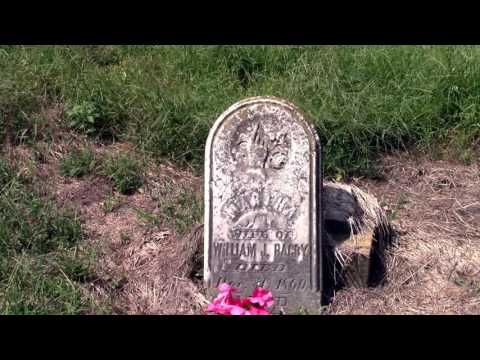 Thumbnail: Old Over Grown Cemetery, Abandoned, Civil War Era Headstones