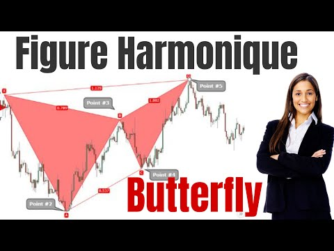 Harmonic Pattern - La Figure Harmonique Butterfly ( Tutoriel )