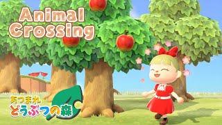 【🍒あつ森🌲】春をまったり過ごす~🌸【にじさんじ/シスター・クレア】