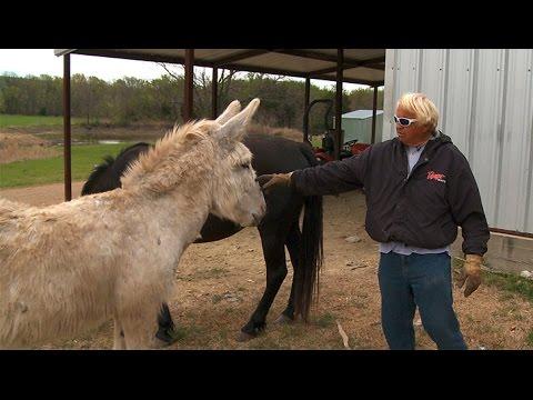 Jimmy Houston's Oklahoma Ranch