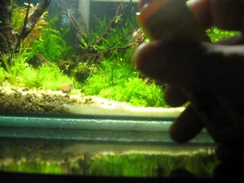 How to setup up an aquarium doovi for Sera aquarium