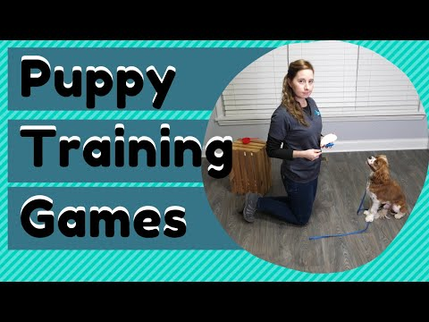 Puppy Training Games