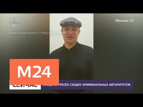 Полиция задержала криминальных авторитетов Хобота и Солому - Москва 24