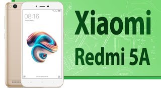 ШОП-ОБЗОР: Xiaomi Redmi 5A лучший смартфон за 5000 рублей/90$