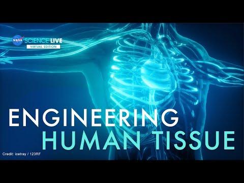 NASA Science Live: Engineering Human Tissue