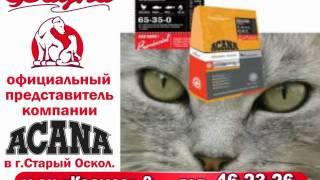 видео Аптека низких цен в Каменец-Подольском