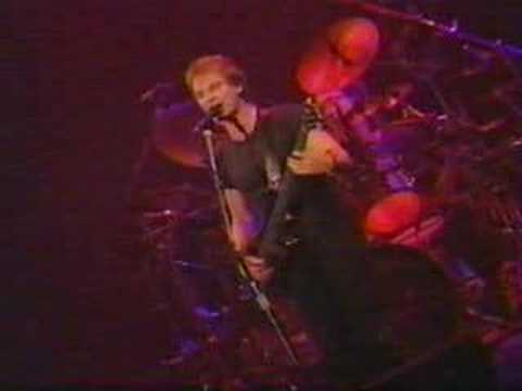 Sting-Mad About You-Live mp3