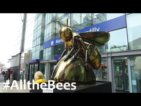 The Manchester Bees! #AlltheBees #BeeintheCity
