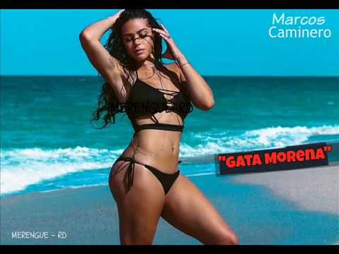 Image result for gata morena marcos caminero