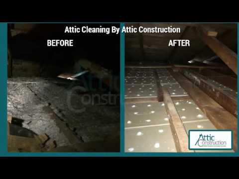 Attic Cleaning Before & After - Insulation & Rodent Proofing Service