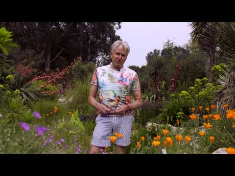 Get Gardening: Desert plants