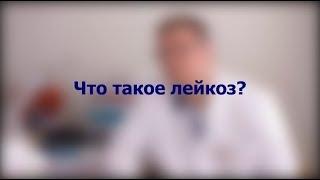 #СПРОСИВРАЧА. Алексей Пшонкин о лейкозе и жизни после него