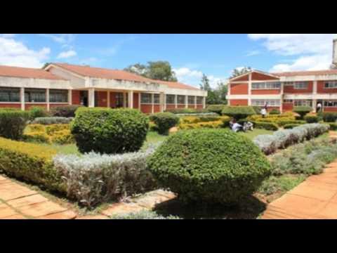 Moi University   documentary