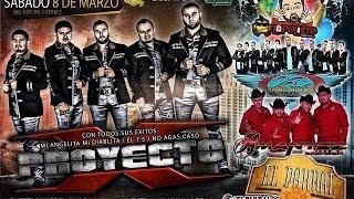 PROYECTO X (Soy 7-5) En vivo 2014