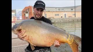 Erik Torres Carpa 31kg - 68lb en Mequinenza