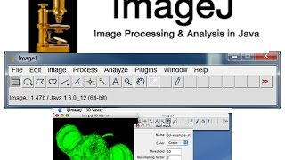 How to download image J