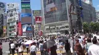 Tokyo 4 Day Trip!