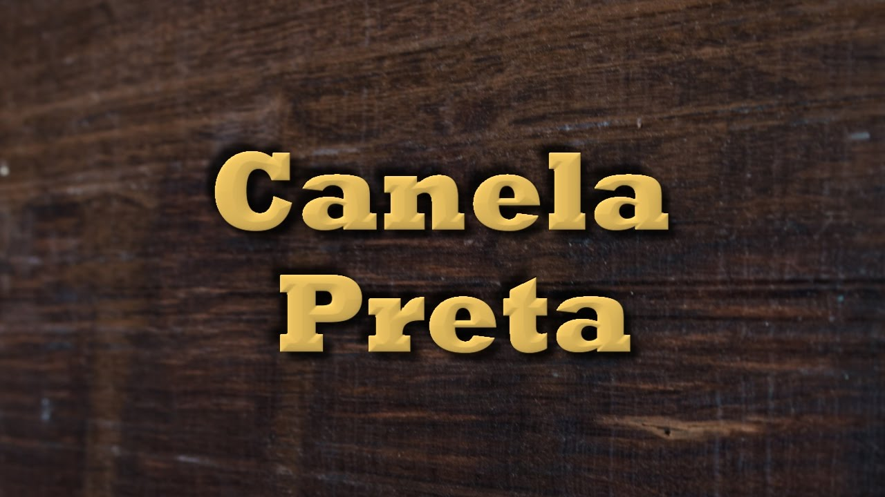 Canela Preta - Tipos de Madeira - YouTube