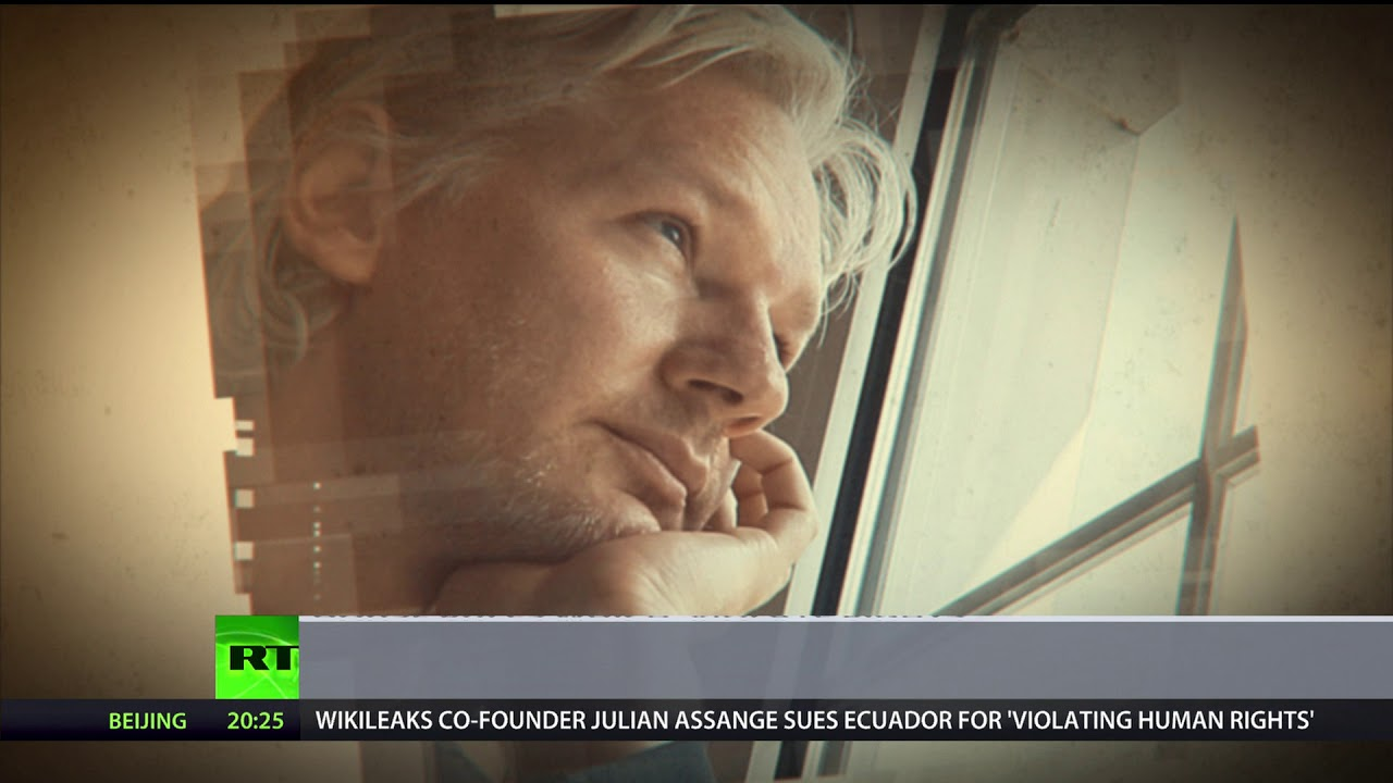 keep-the-cat-under-control-assange-sues-ecuador-over-strict-house-rules-which-violate-rights