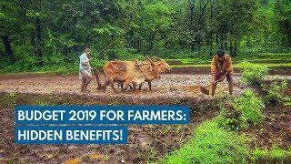 Budget 2019 for farmers: Hidden benefits!