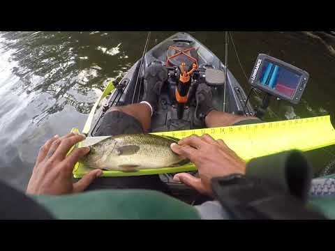 Kayak Bass Fishing Ford Lake In Michigan - Old Town Topwater PDL