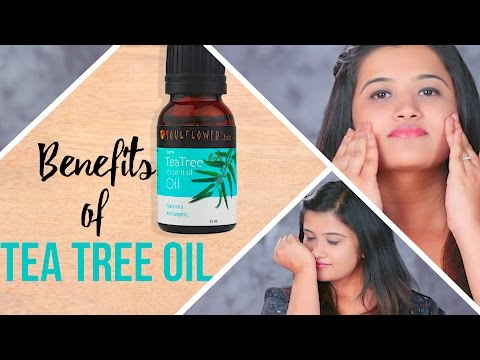 5 Essential Uses of Tea Tree Oil For Face And Skin