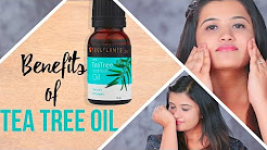 hqdefault - Tea Tree Oil For Oily Skin And Acne